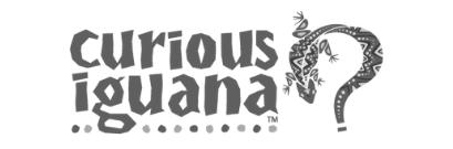 Curious Iguana